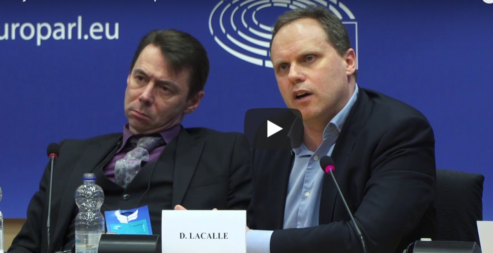 Daniel Lacalle at European Parliament